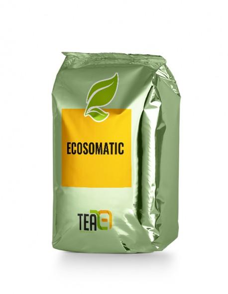 Ecosomatic